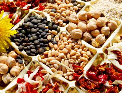 Legumes secs 1