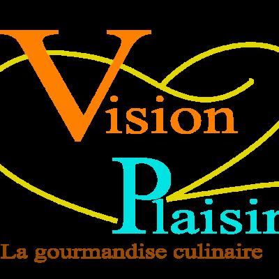 Vision plaisir logo hd 1