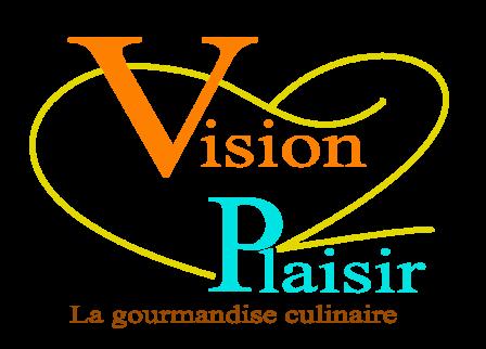 Vision plaisir logo hd