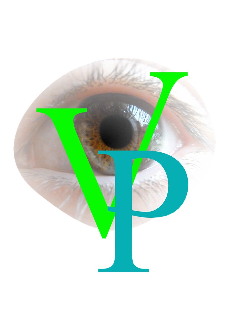 Visionplaisirlogo